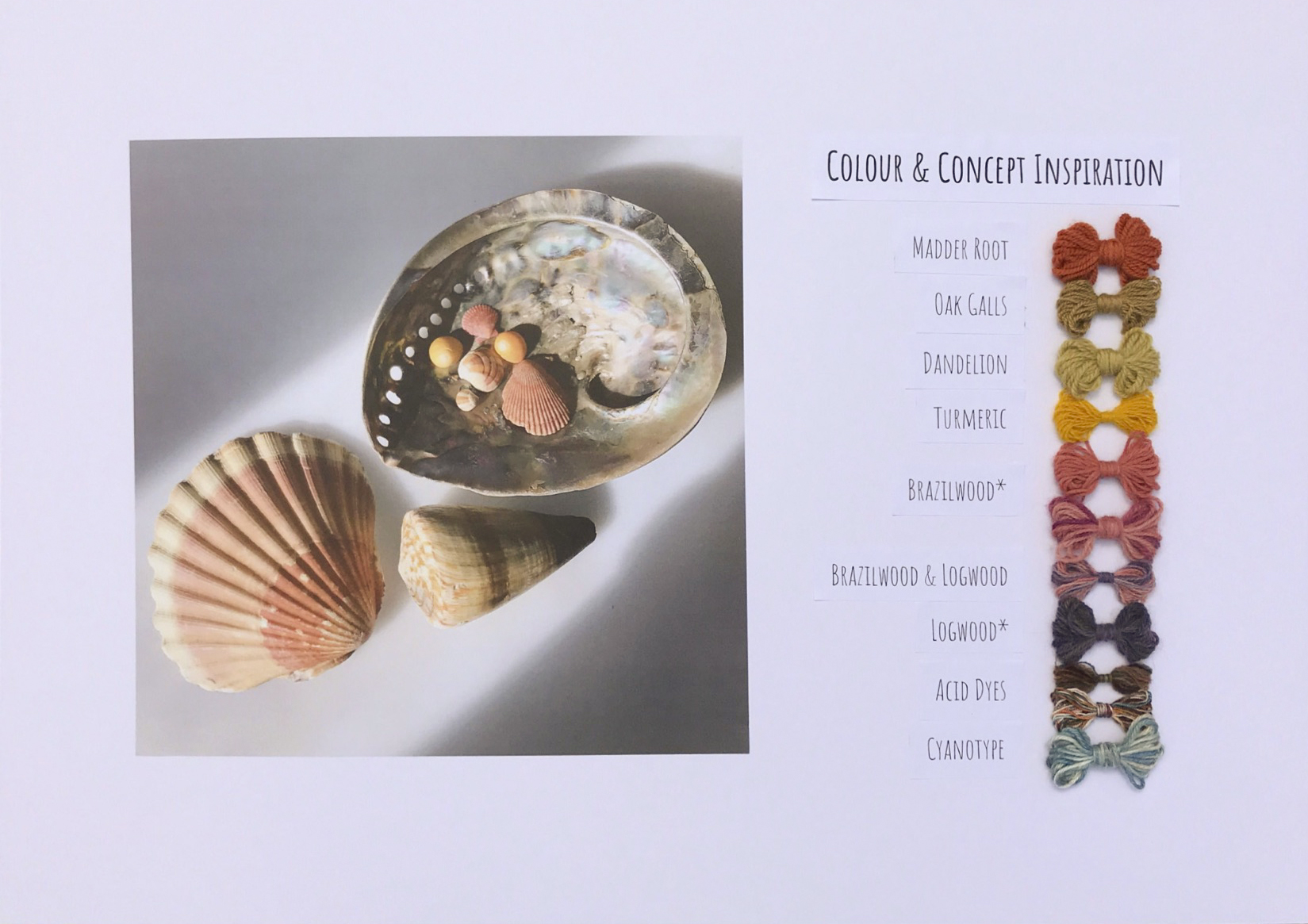 Shells board
