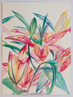 Lily Plant Still Life