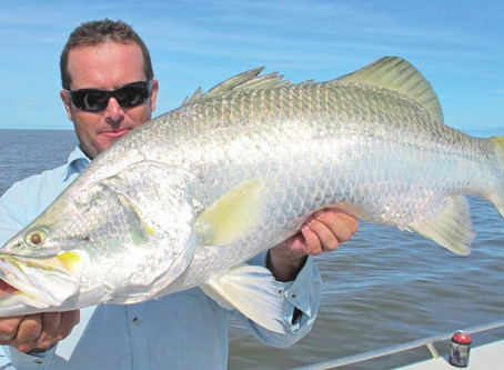 Barramundi, el pescado que destronó al salmón