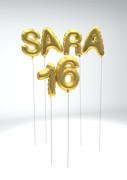 sara_16_ara.jpg