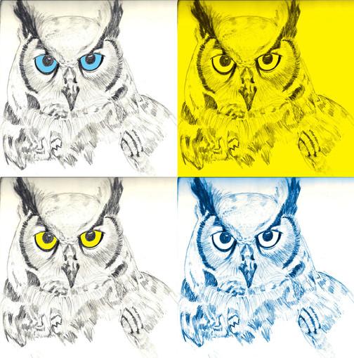 owl_color.jpg