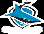 sharks_Logo_BLACK BG.png