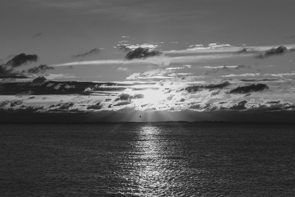 Black and White Grayscale Greyscale New England Long Island Sound Sunrise Photography Clouds Sun Light Bird Flying Ocean Calm Morning Beach Park New London Connecticut Groton Southern Skyline