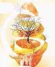 Karen Boissoonneault-Gauthier Citrus_Isl