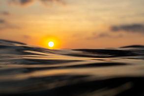 Rising from the Deep -- Joe Campbell.jpg