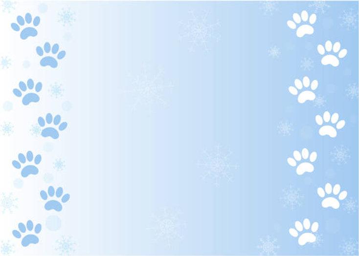 Dog Walking Service Glasgow.jpg