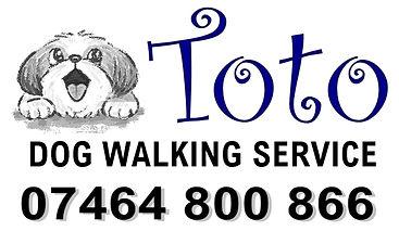 TOTO DOG WALKING 3.jpg