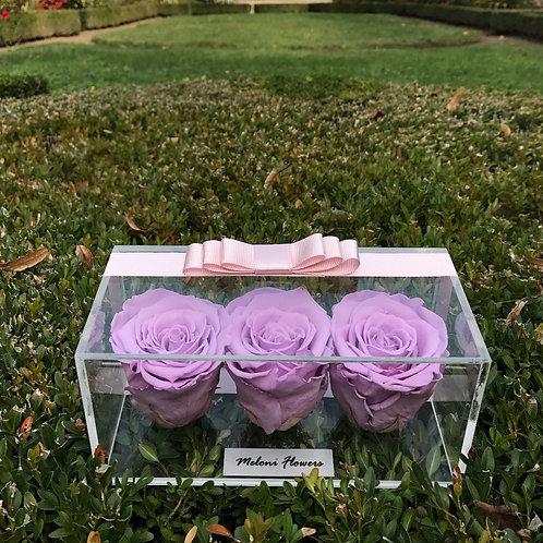 3'lü Lila Solmayan Güller