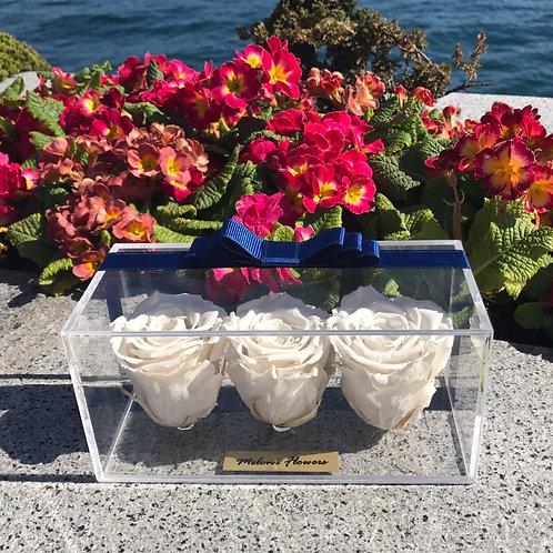 3'lü Beyaz Solmayan Güller