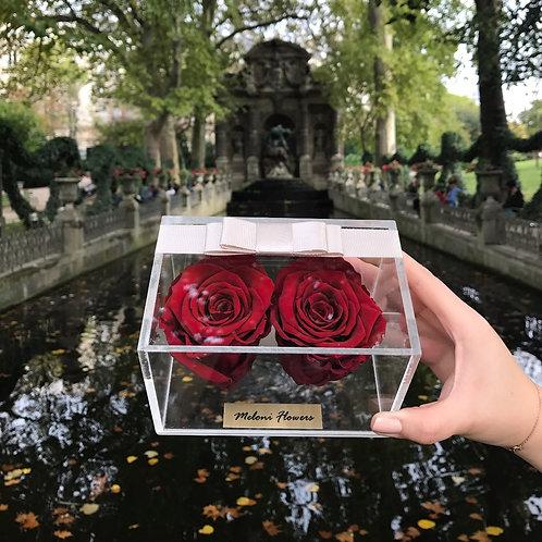 2'li Kırmızı Solmayan Güller