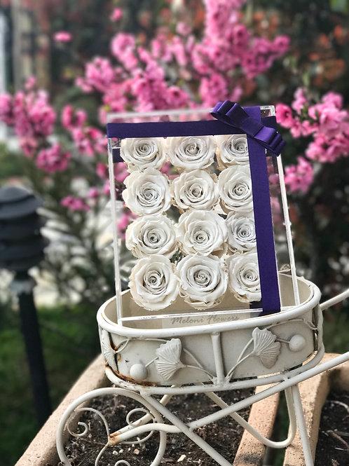 12'li Beyaz Solmayan Güller