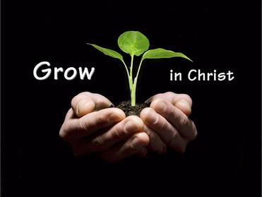 Terus Bertumbuh dalam Yesus Kristus