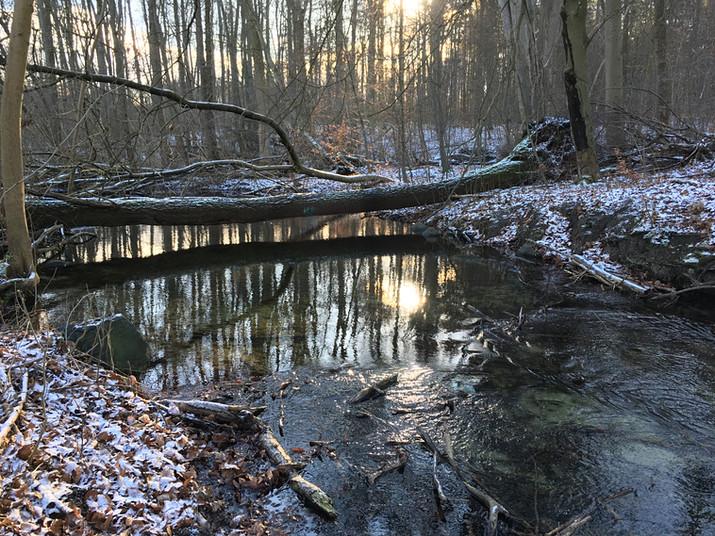 Die herrliche Umgebung läd zum Spazierengehen ein, Flüsse, Wälder, Hügel, herrliche Landschaften in Mecklenburg.