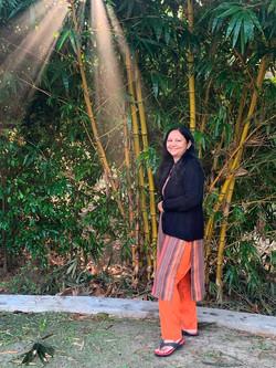 Holy Bamboo