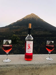 вулкан и вино 2.jpeg