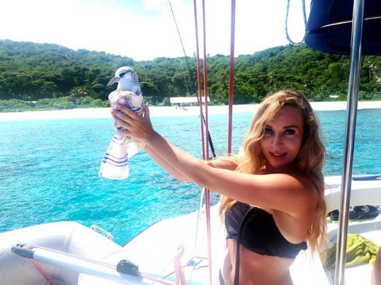 приключение на Сейшельских островах.jpg