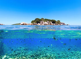 Under and above water photo of small isl