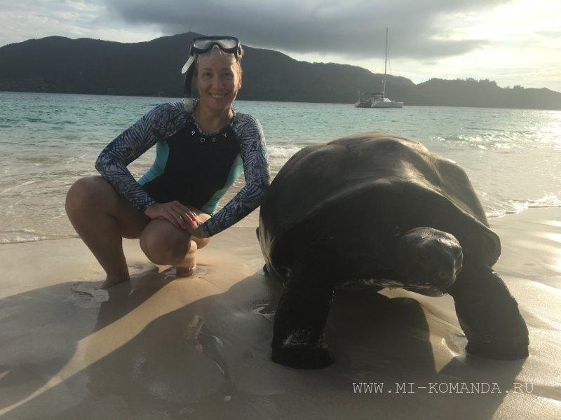 знакомство с черепахами на острове Курьез