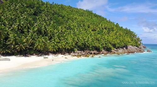 отдых на Сейшельских островах.jpg