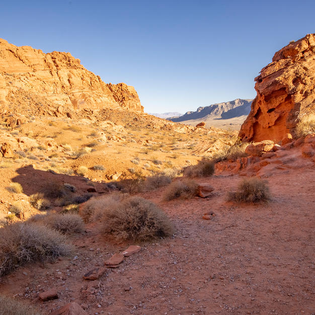 Wedding area Valley of Fire view