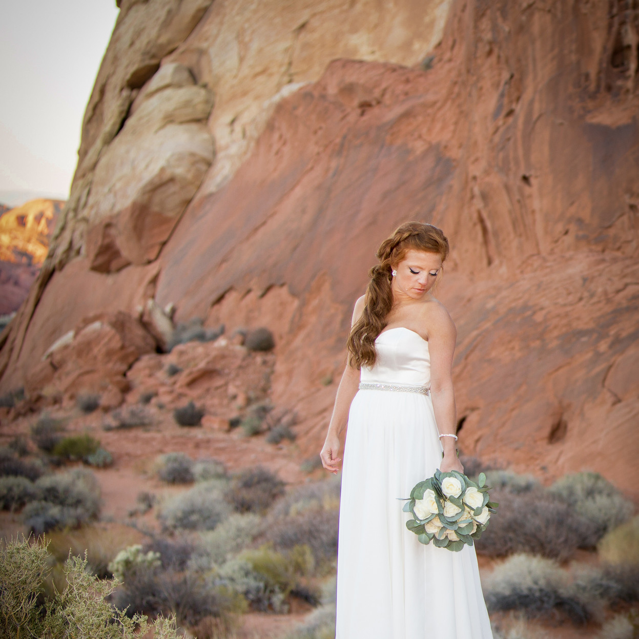 Valley Of Fire Portrait