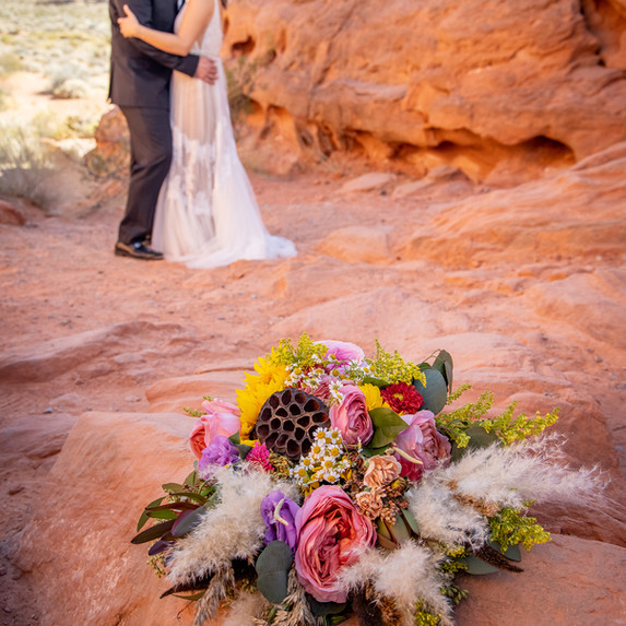 Bridal Portrait Valley of Fire
