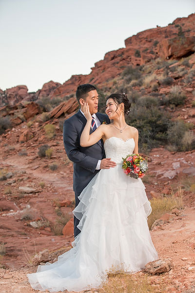 Bride And Groom At Red Rock Canyon