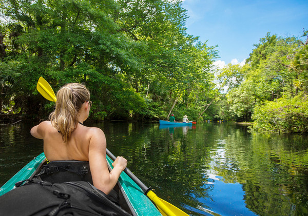 river-oak-gallery-kayaks.jpg