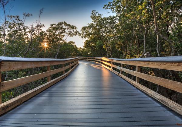 river-oak-gallery-path.jpg