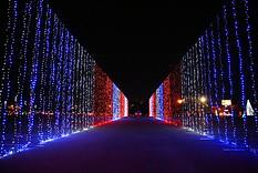 Christmas Nights of Lights 22.jpg