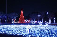 Christmas Nights of Lights 14.jpg