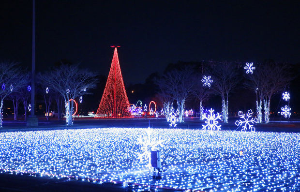 Christmas Nights of Lights 14.jpg