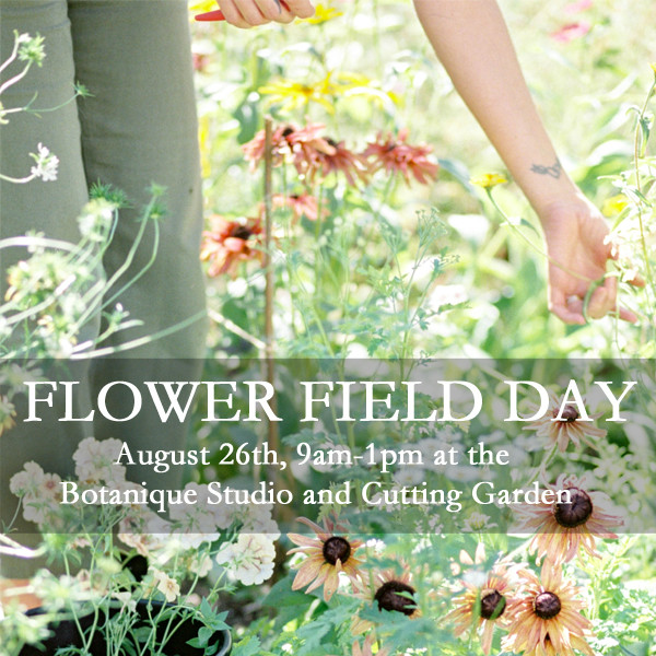 Seattle Floral Design Workshop Flower Field Day