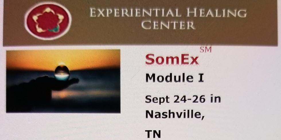 SomEx Module 1 in Nashville