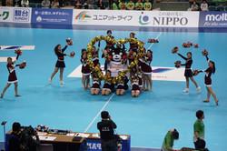 2017年熊本復興応援女子ハンドボールプレーオフ