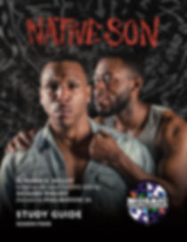 Native Son Study Guide FINAL_cover.jpg
