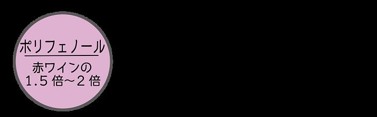 005-ポリフェノール.png