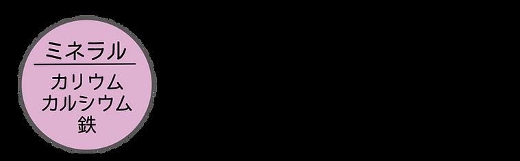 003-ミネラル.png