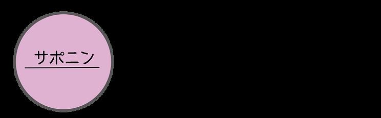 006-サポニン.png