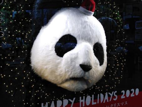 和菓子で楽しむクリスマス!