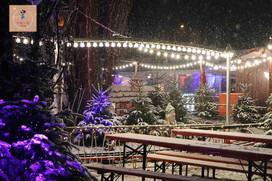 德國、波蘭 親子自由行 什麼 ! 德國居然有多達 150 多個迷人的聖誕市集
