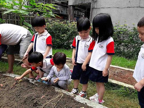 新北市私立和平幼兒園