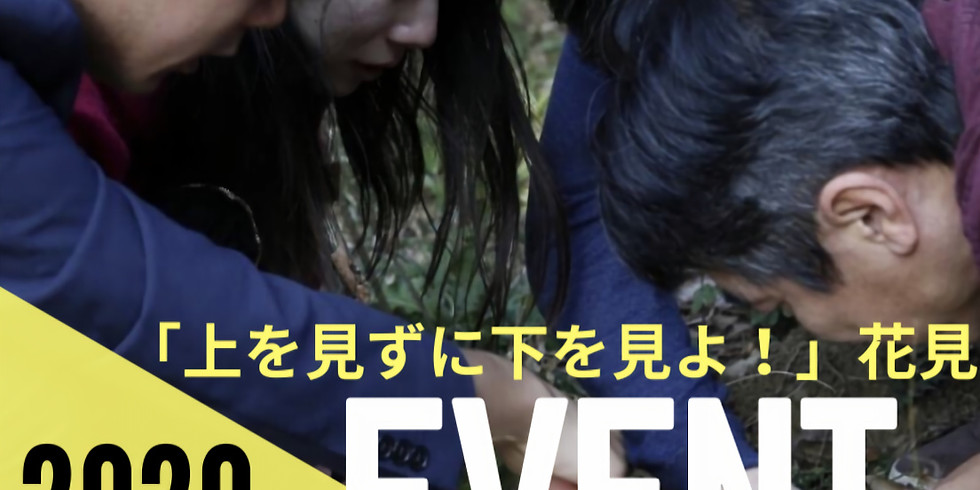 (延期)4/18招待イベント「上を見ずに下を見よ!」花見イベント開催します