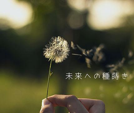 野草縁.jpg