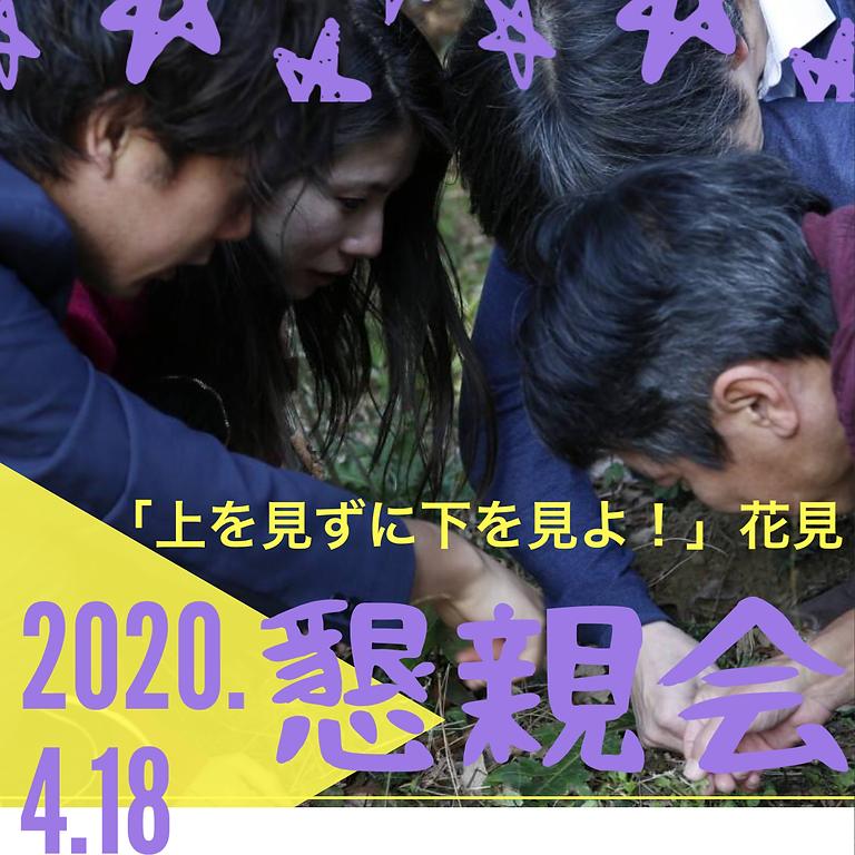 (延期)4/18夜YASOUEN懇親会