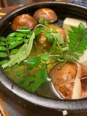 野草湯豆腐