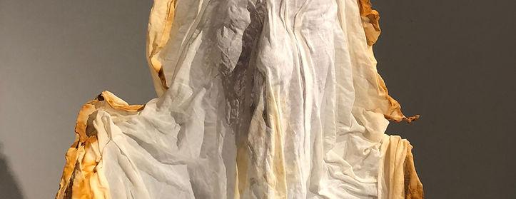 Veils Detail.jpg