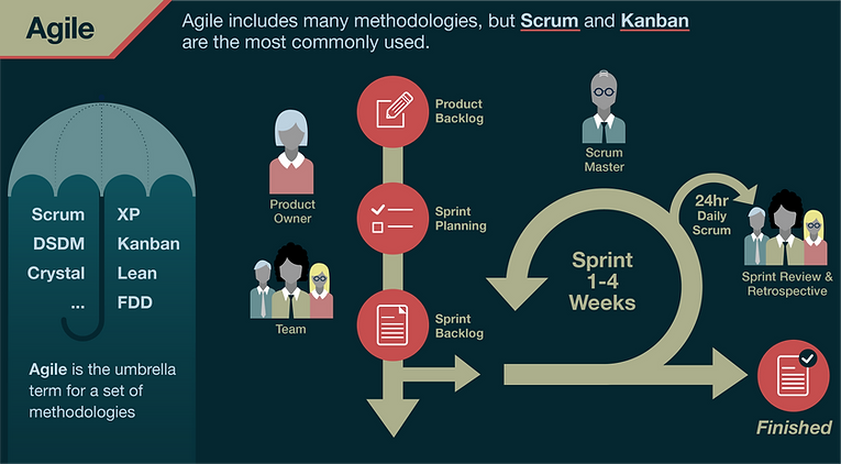 TSPS Agile Infographic-03.png