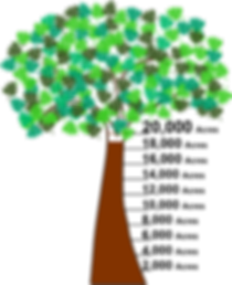 LPT_tree_empty_numbers_2.png