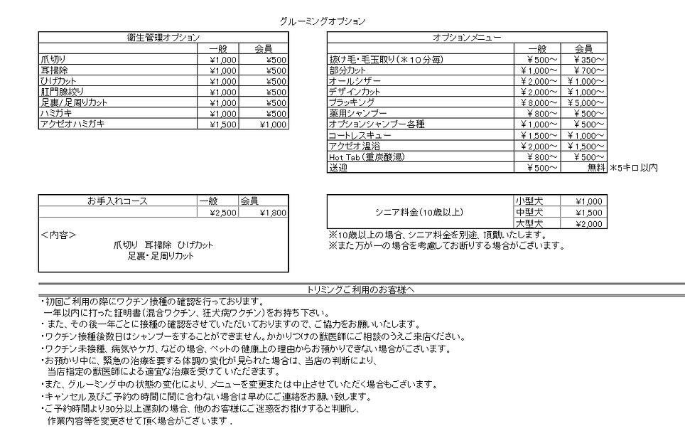 改定版オプション価格.png